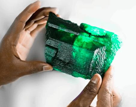 Lions Emerald DesignYard