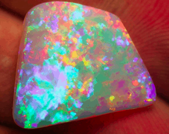 Opals in Designyard